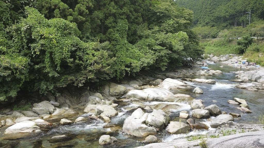 Zen Hostel River