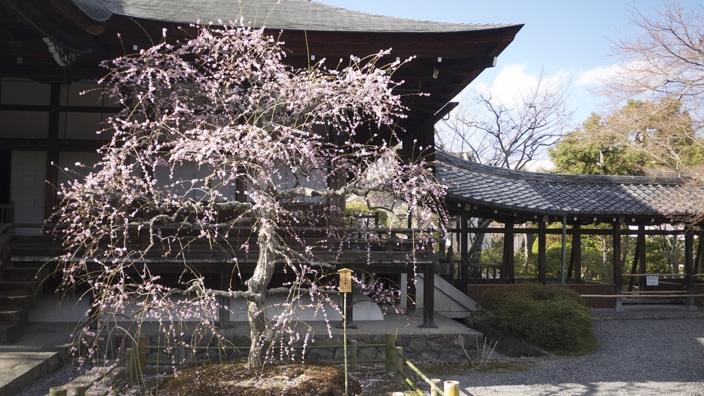 Tahō-den