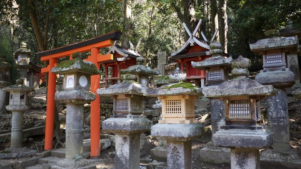 Stone & Wood Lanterns