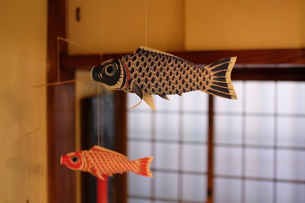 Breezy Fish