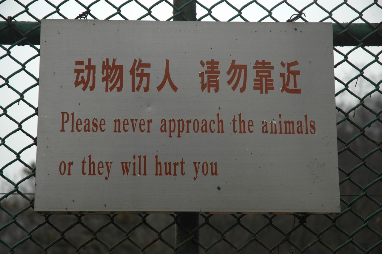 Please never approach the animals or they will hurt you