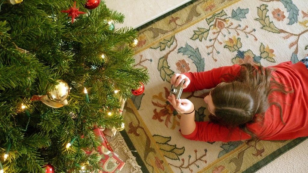 Tree + Sarah