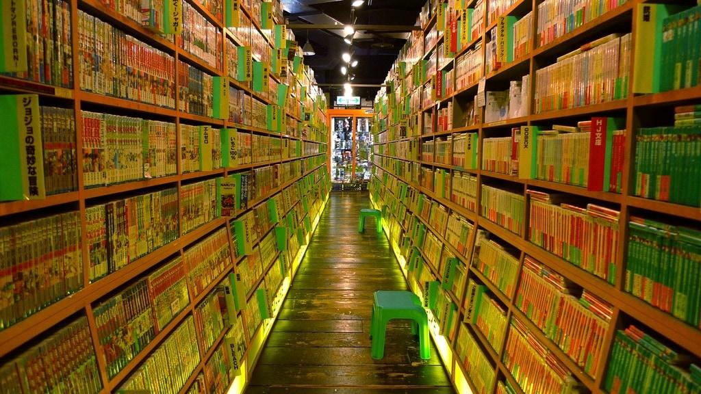 Underground Manga Store