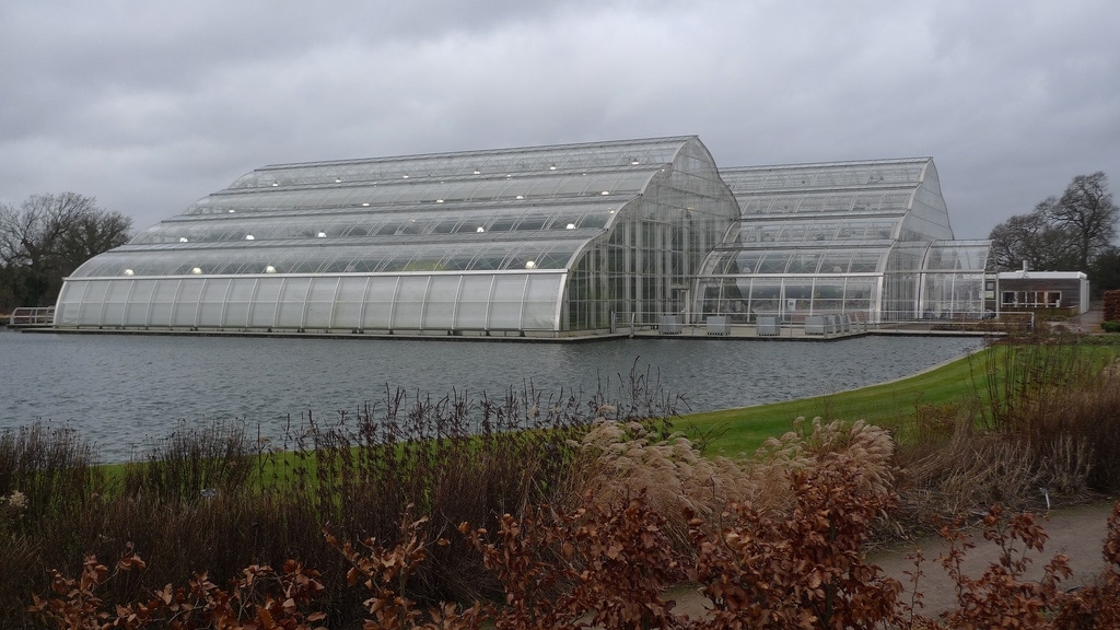 The Glasshouse @ RHS Wisley