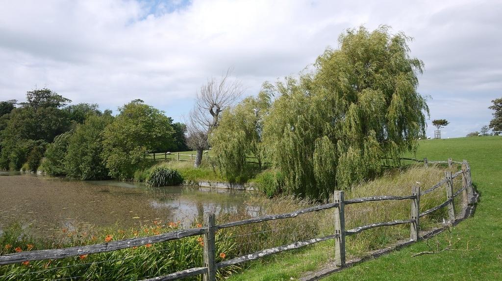 Firle Place Lake