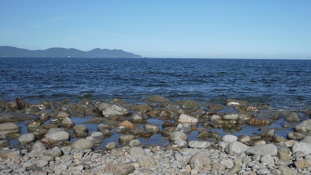 Grass Island Shore