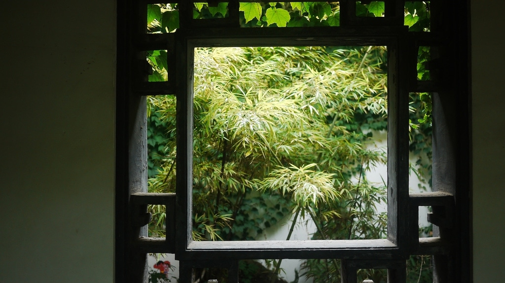 Green Window