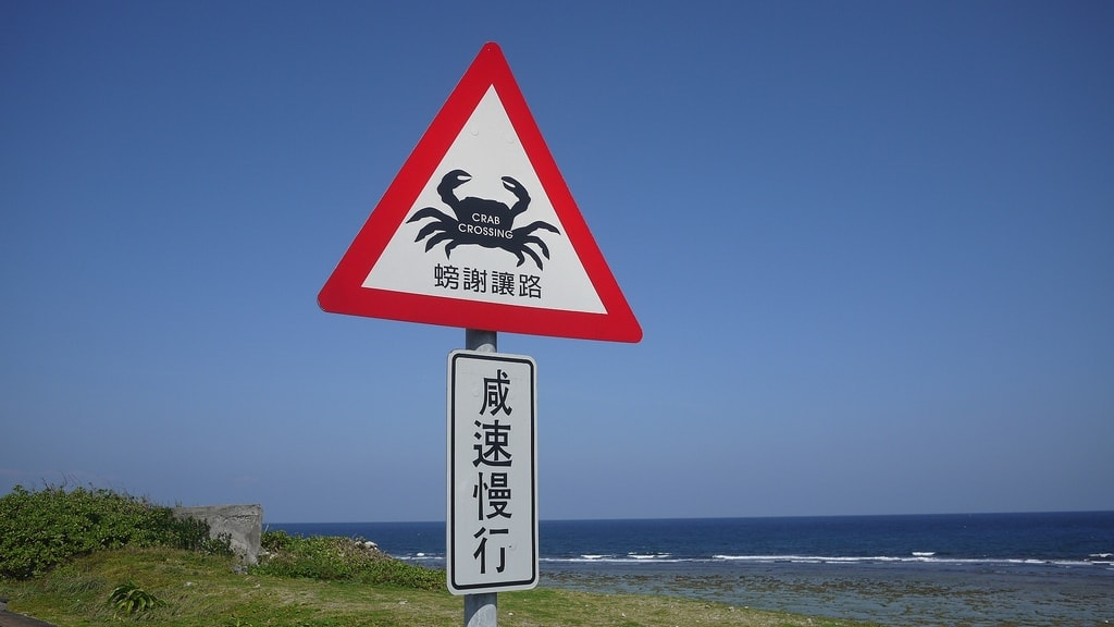 Crab Crossing