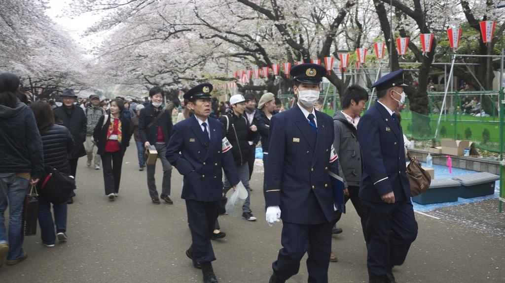 Hanami Patrol
