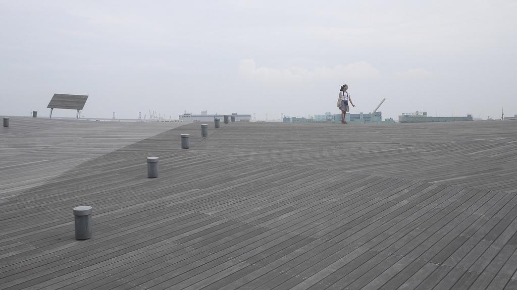 Ōsanbashi Pier Rooftop