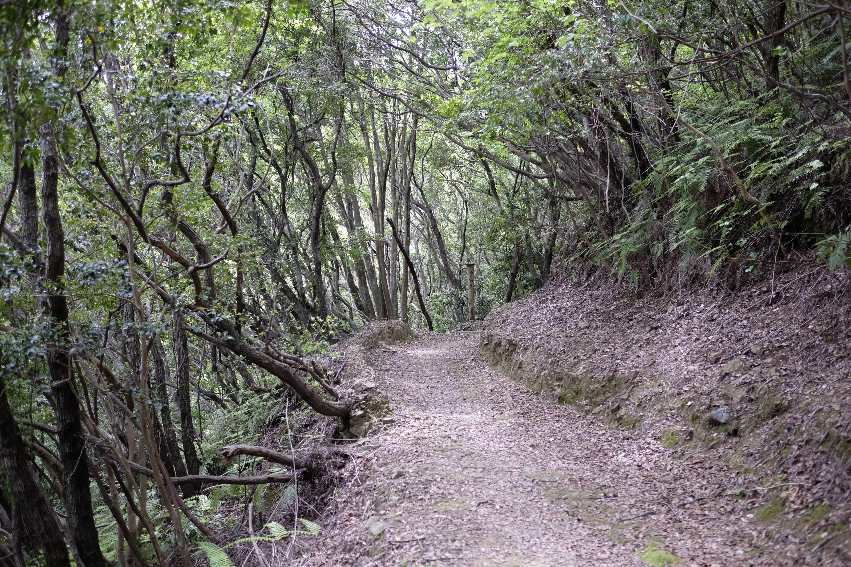 Yamaza Pass