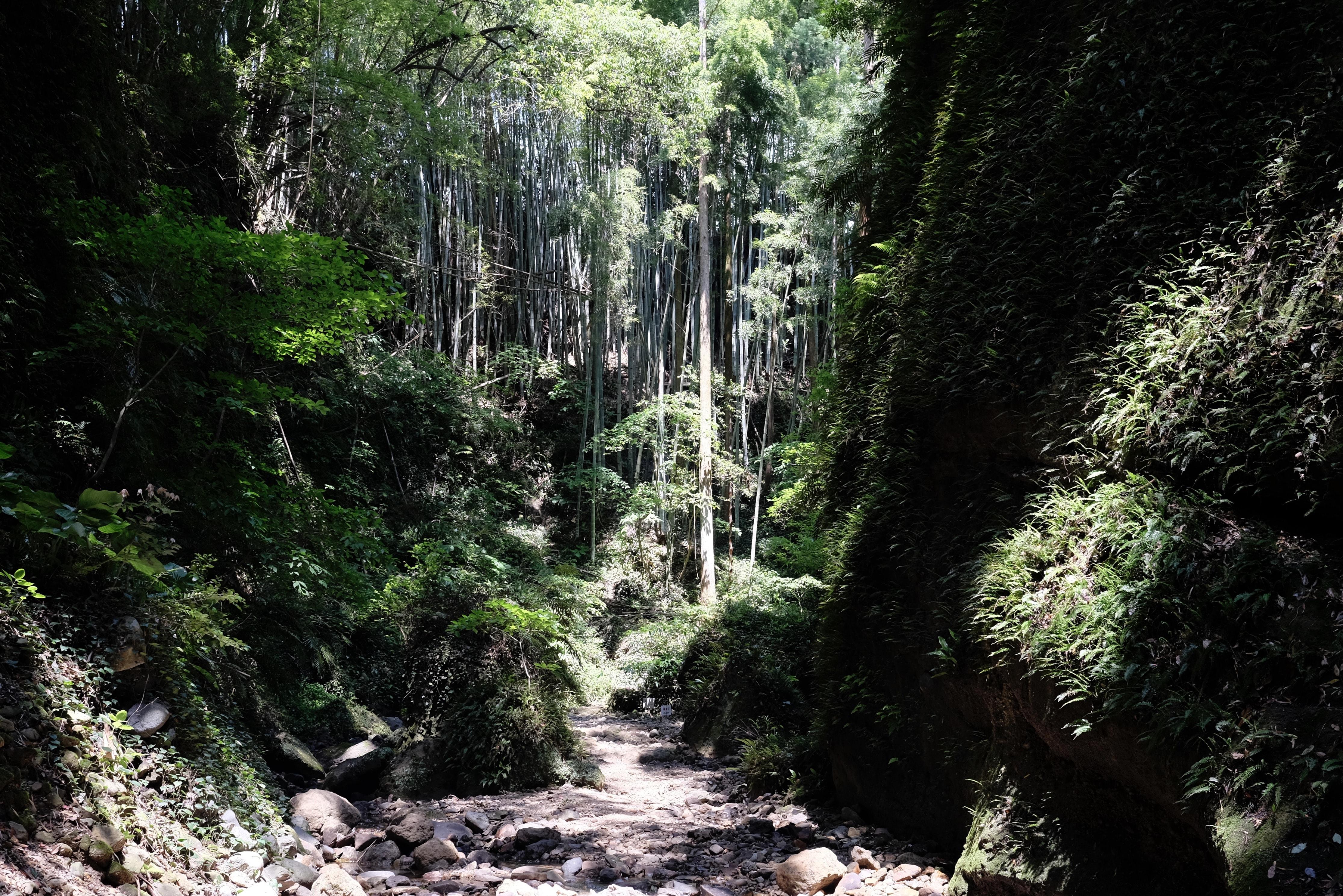 Iokidō Cave trail