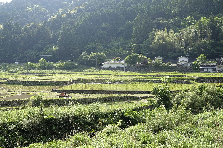 Ichinose Trail