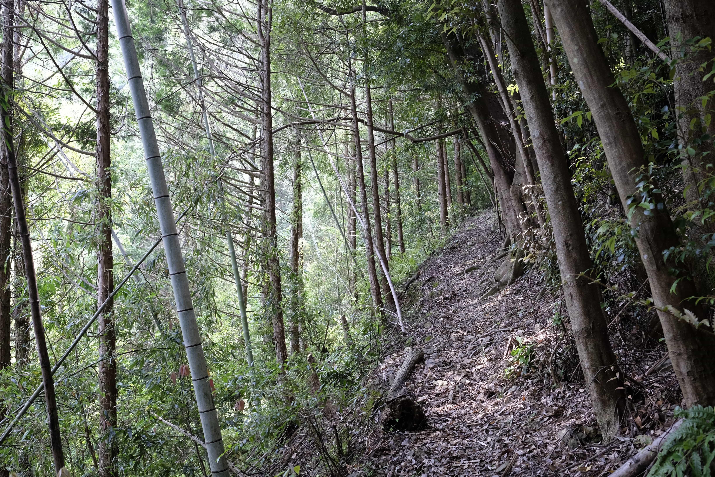 Izuta Pass Trail