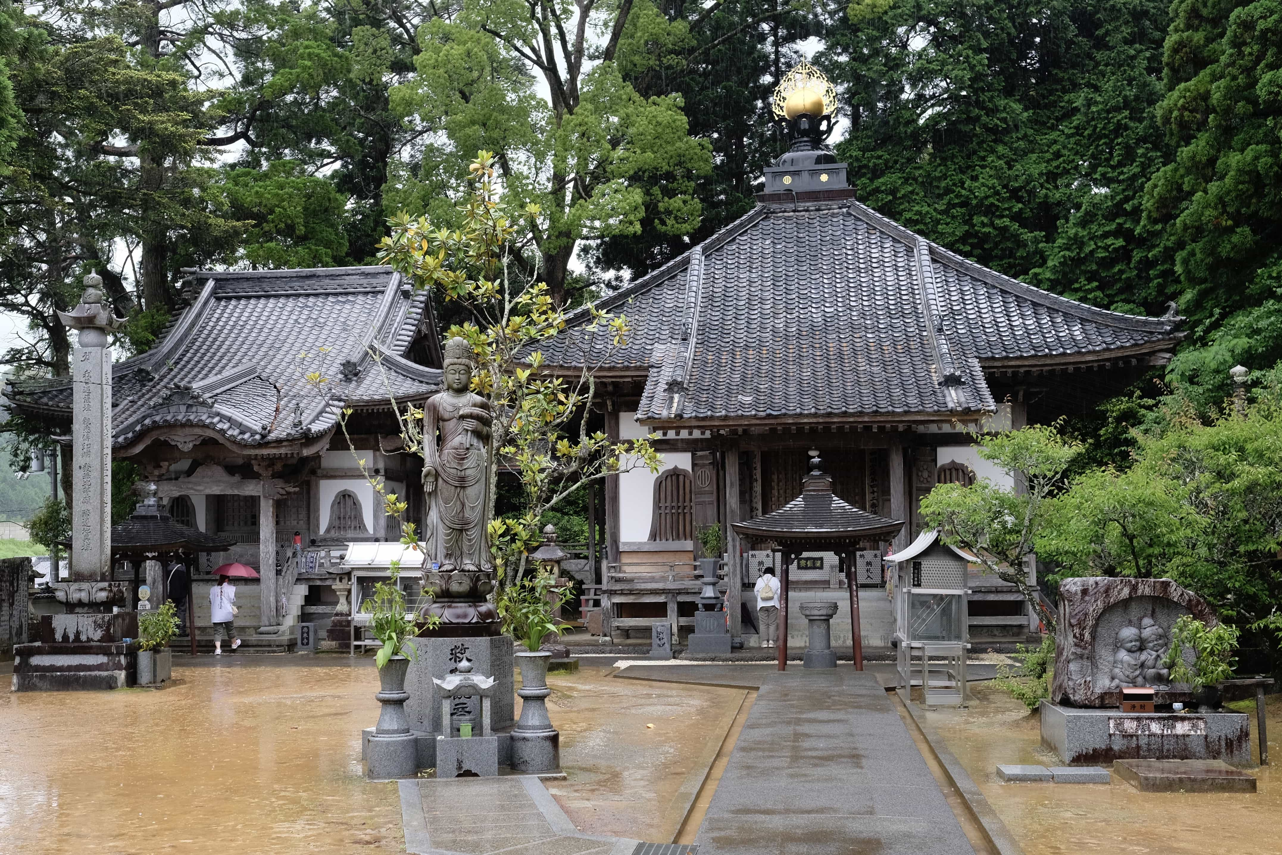 Butsumoku-ji in the rain