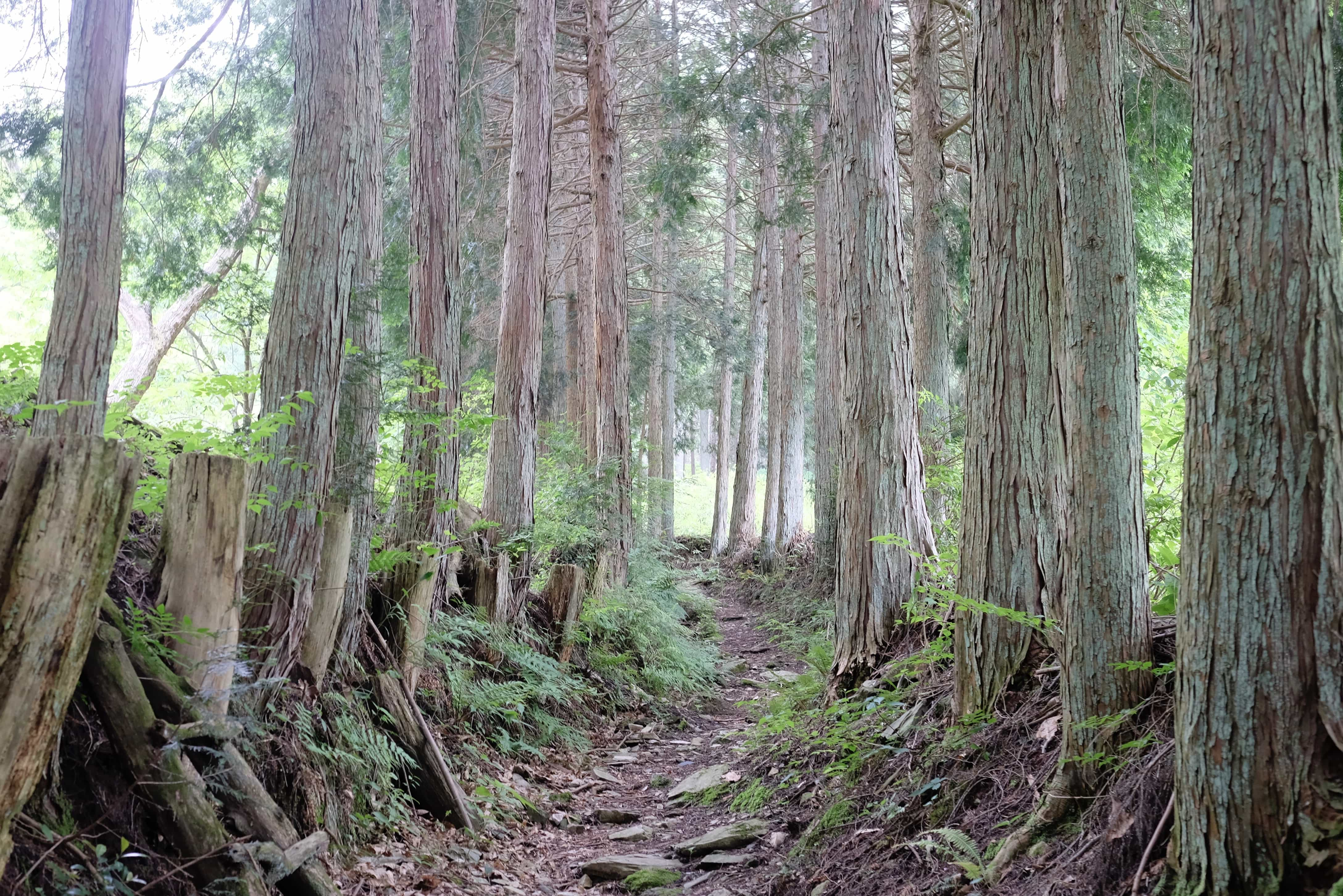 Hiwata-tō Pass