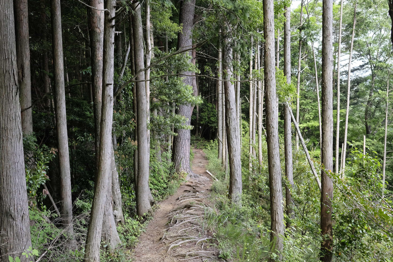 Hacchōzaka Slope