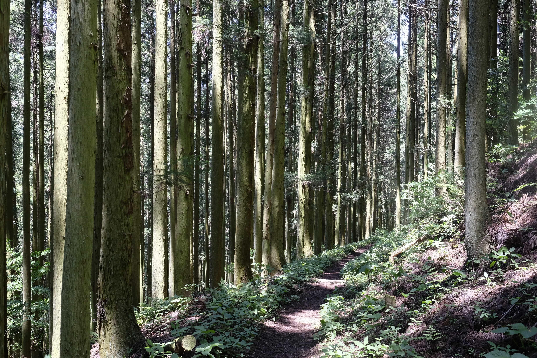 Misaka-tōge Pass