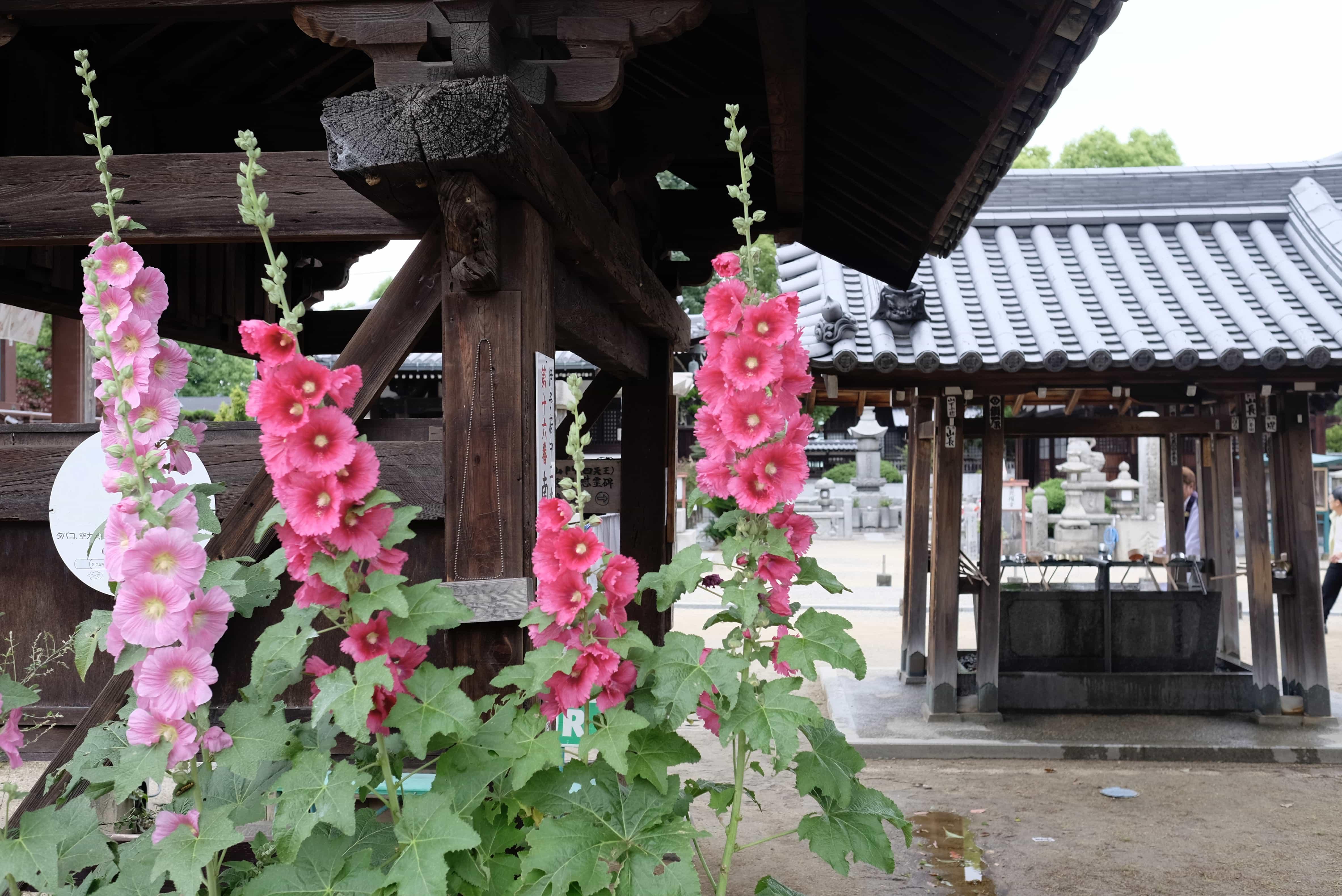 Nankōbō
