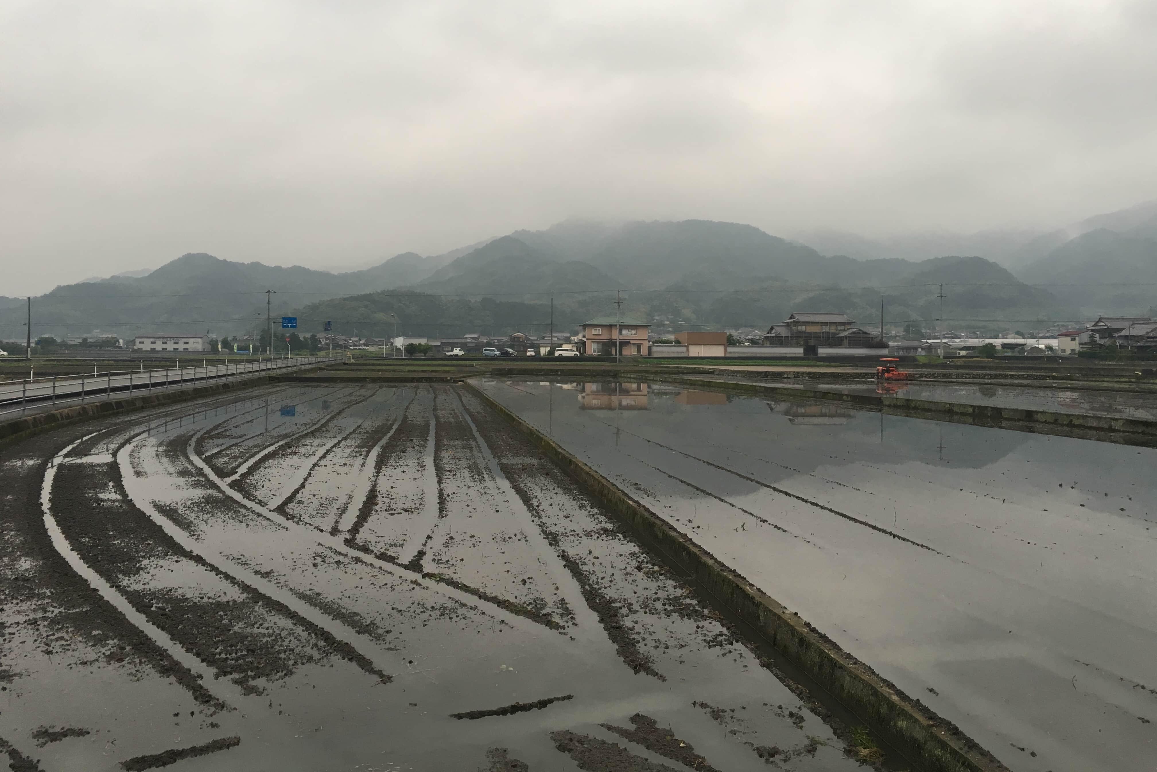 Near Myōunji