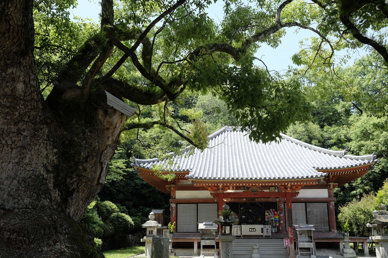Kannon-ji