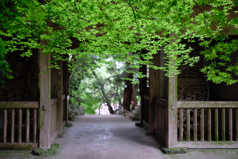 Iyadani-ji Gate
