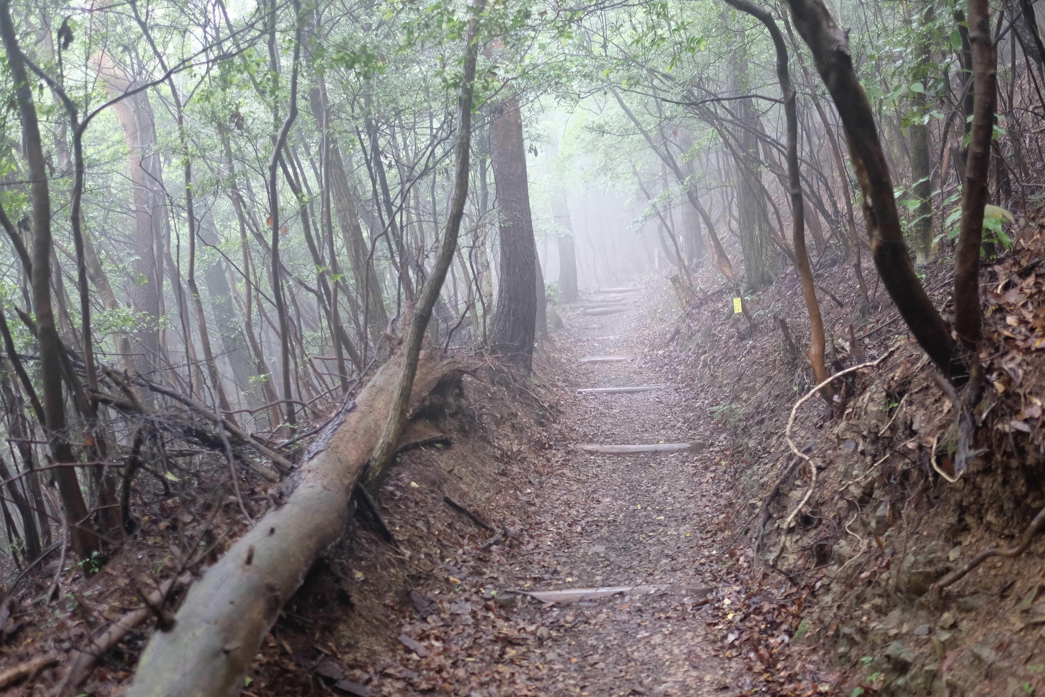 Sanuki Henro Trail
