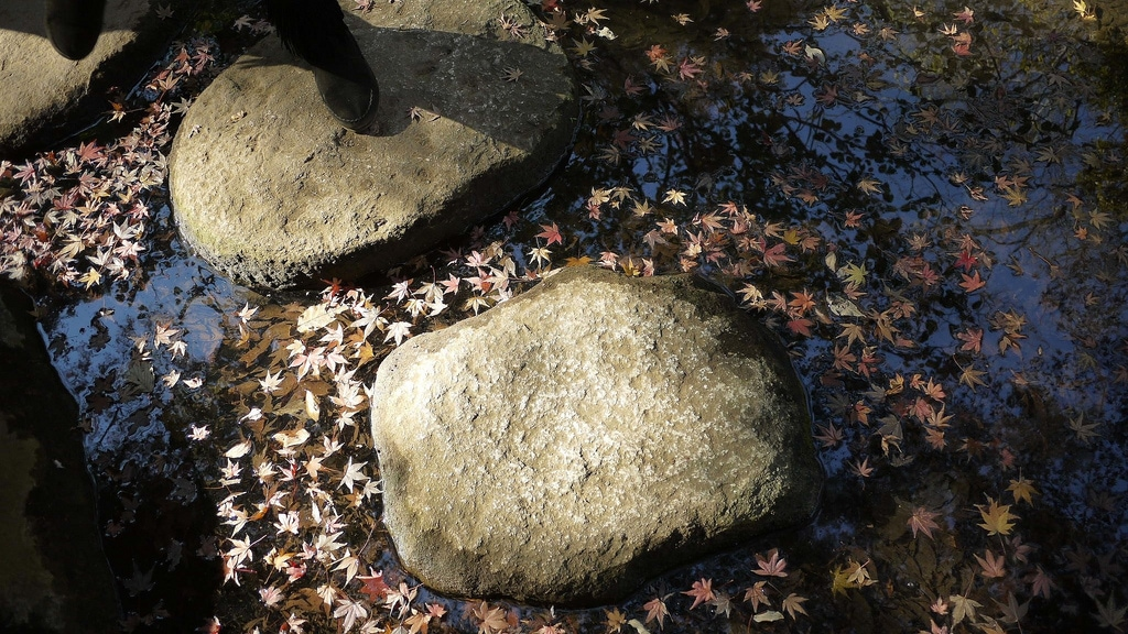 Rikugien Garden Stepping Stones
