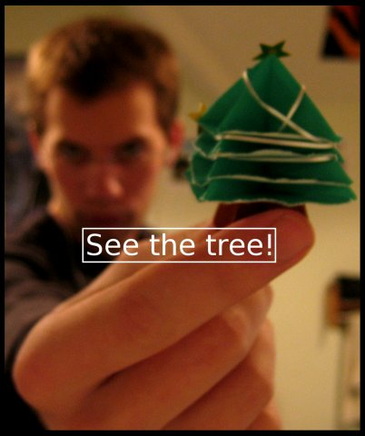 See the tree!