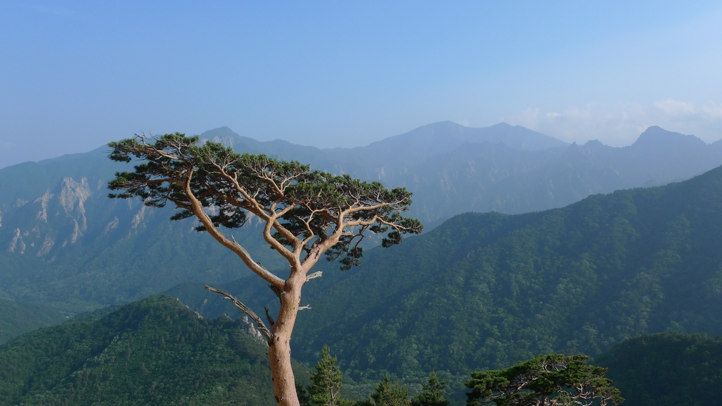 Seoraksan National Park Mountain