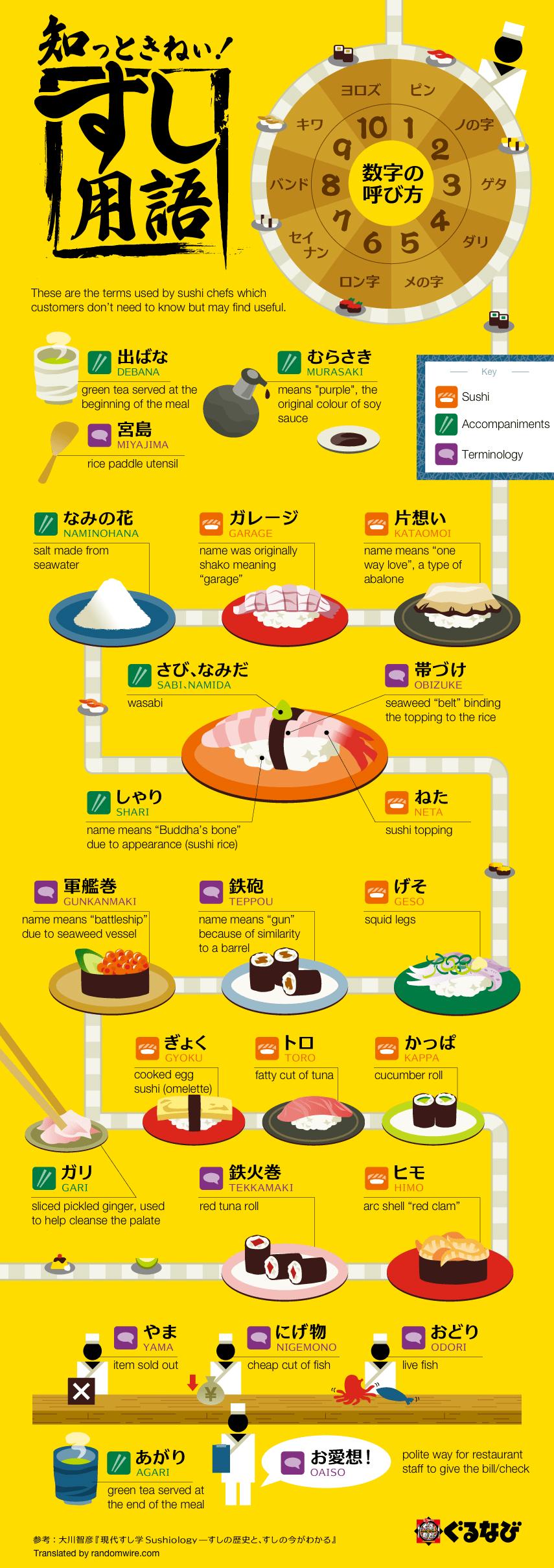 Sushi Jargon Infographic