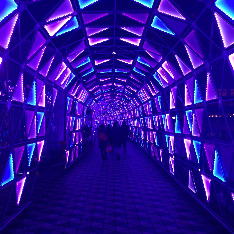 Photos Of Neon Tokyo 東京ネオン