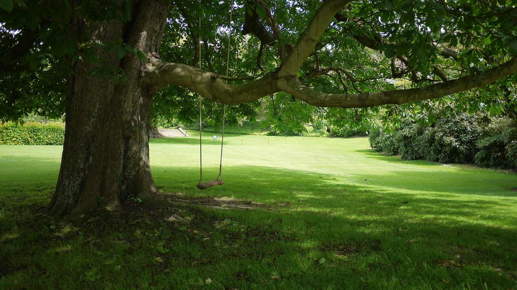 Firle Place Tree Swing